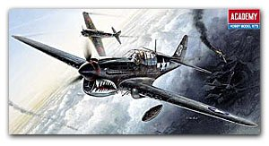 P-40 M/N Warhawk   (Vista 1)