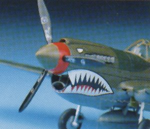 P-40 M/N Warhawk   (Vista 2)