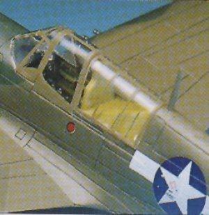 P-40 M/N Warhawk   (Vista 3)