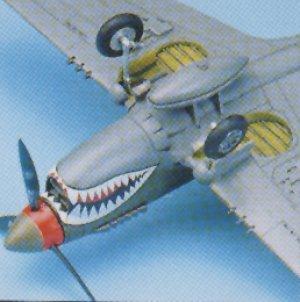 P-40 M/N Warhawk   (Vista 4)