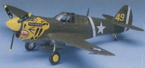 P-40E Warhawk   (Vista 2)