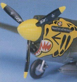 P-40E Warhawk   (Vista 3)