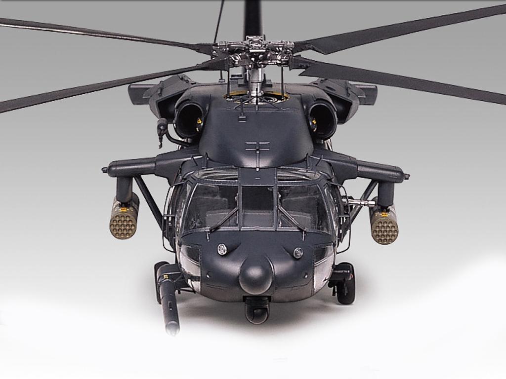 AH-60L Dap Black Hawk  (Vista 5)