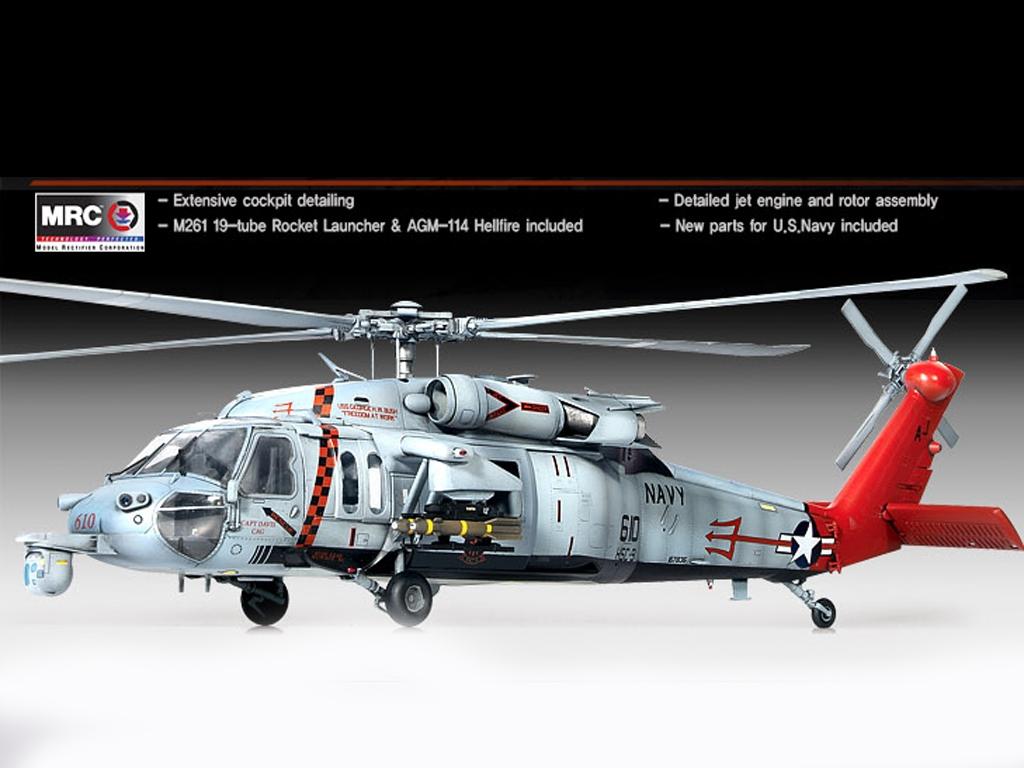 U.S.Navy MH-60S HSC-9 Tridents  (Vista 2)