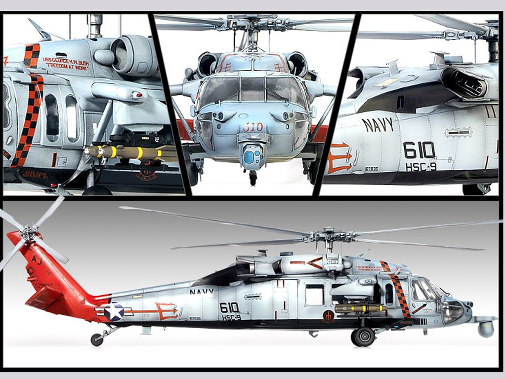 U.S.Navy MH-60S HSC-9 Tridents  (Vista 3)