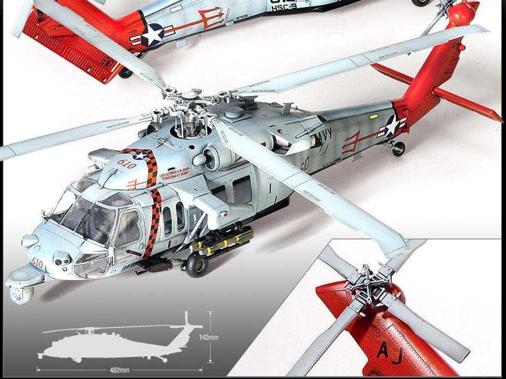 U.S.Navy MH-60S HSC-9 Tridents  (Vista 4)