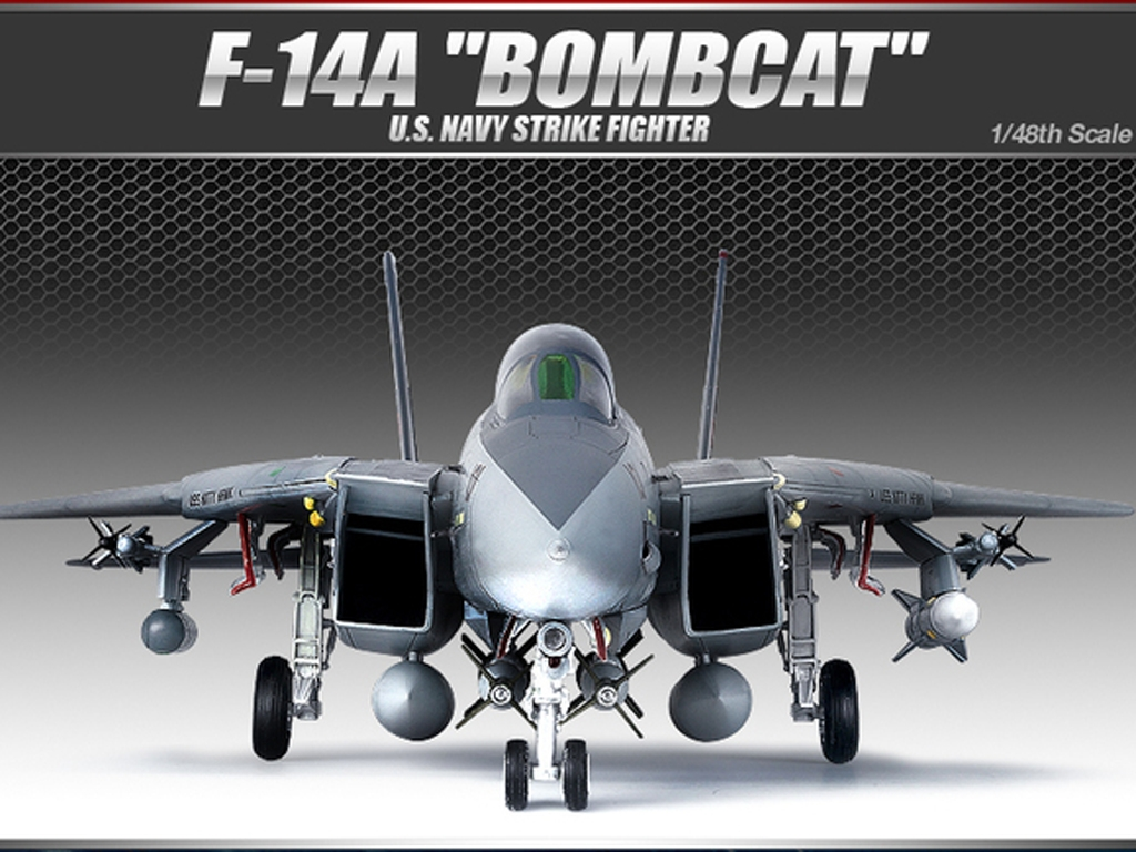 F-14A   (Vista 1)