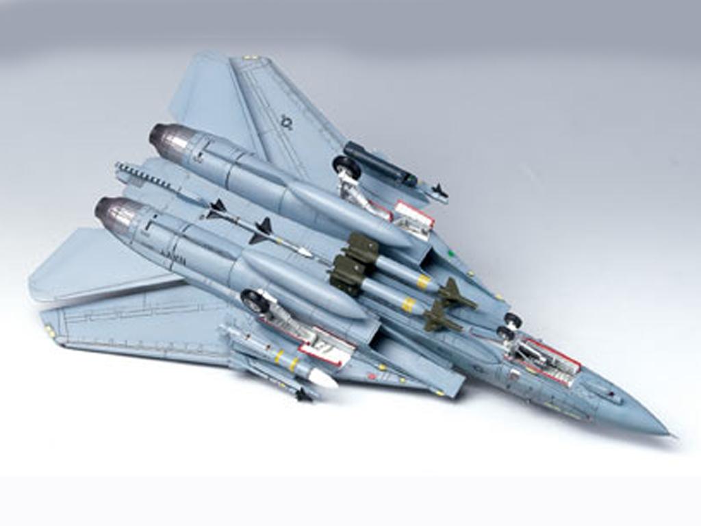 F-14A   (Vista 4)