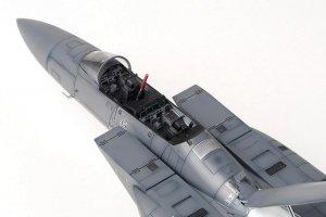 F-15K SLAM Eagle  (Vista 2)