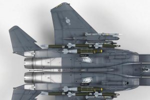 F-15K SLAM Eagle  (Vista 3)