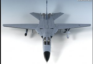 F-111C Australian AIR Force   (Vista 6)