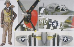 P-47D Thunderbolt  (Vista 4)