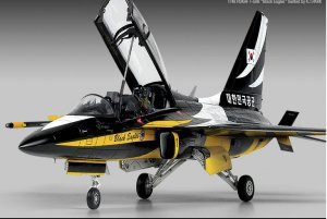 Rokaf T-50B Black Eagles  (Vista 5)