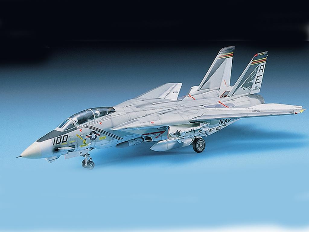 F-14A Tomcat  (Vista 2)
