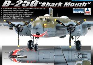 B-25G  Shark Mouth  (Vista 2)