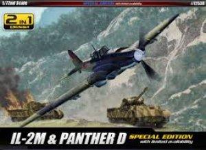 IL-2M & Panther D  (Vista 1)
