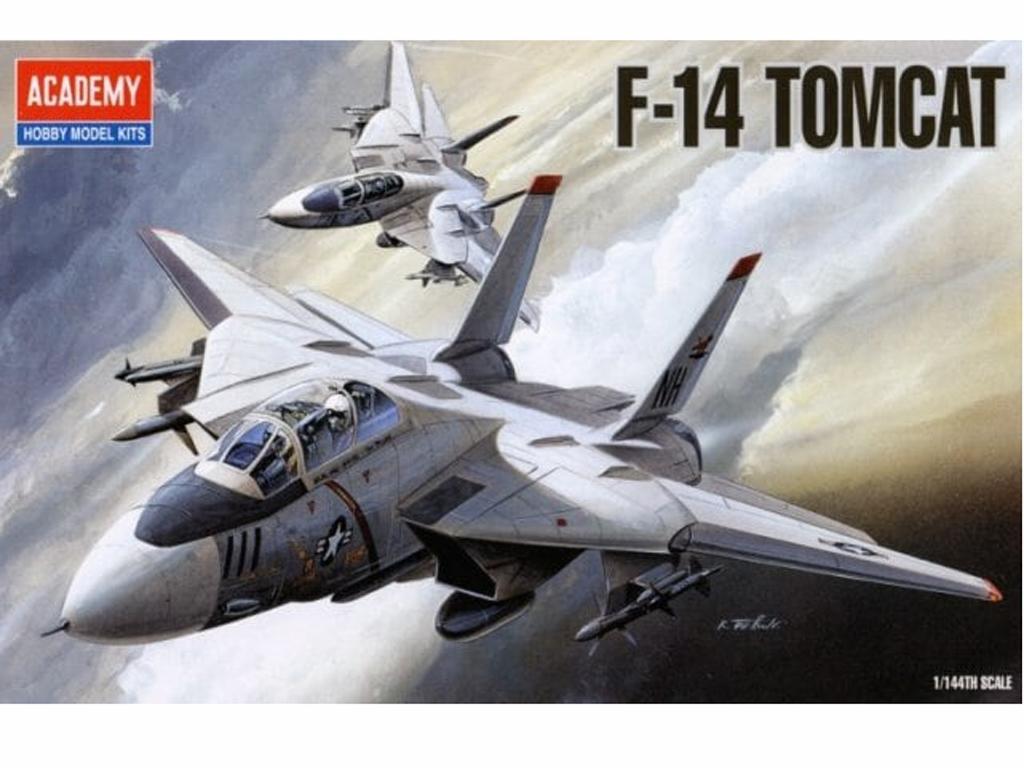 F-14 Tomcat (Vista 1)