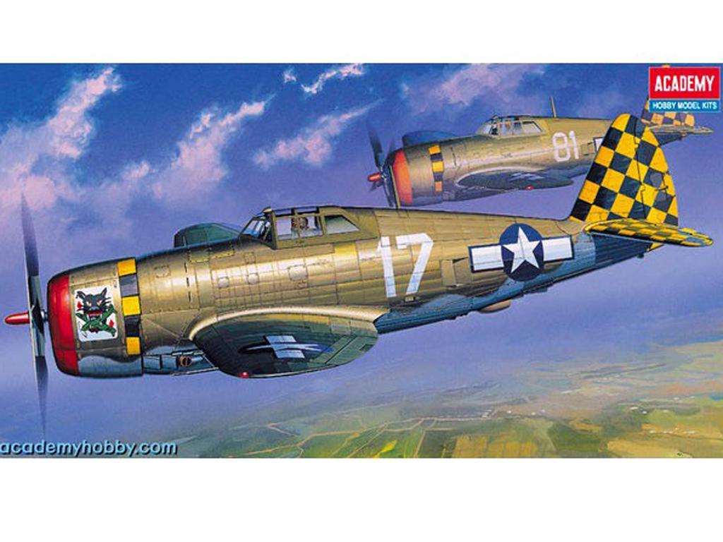 P-47D Thunderbolt  Razor Back  (Vista 1)