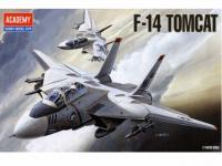 F-14 Tomcat (Vista 2)