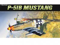 P-51B Mustang  (Vista 6)