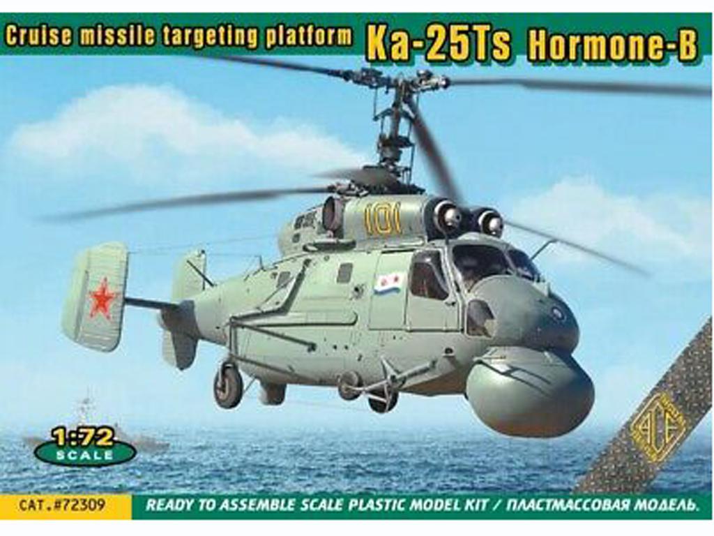KA-25TS HORMONE B Cruise missile (Vista 1)