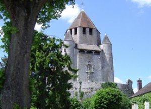 Tour Cesar-Provins - Francia - S. XII  (Vista 3)