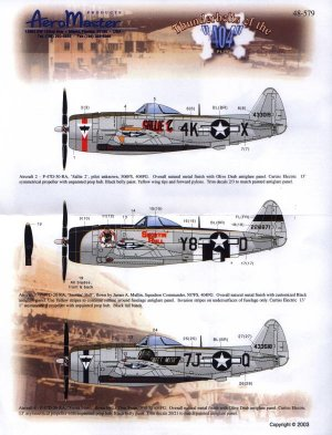 Thunderbolts of 404 FG Foglio IV Sallie  (Vista 1)