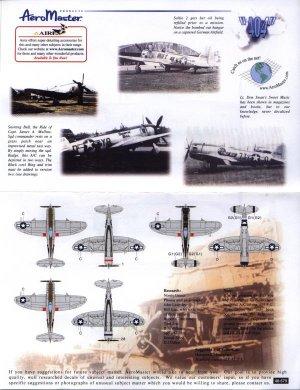 Thunderbolts of 404 FG Foglio IV Sallie  (Vista 2)
