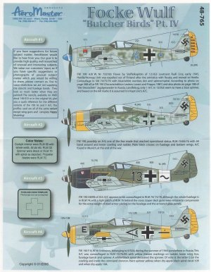 Focke Wulf Butcher Birds, Pt IV (Fw-190A  (Vista 1)