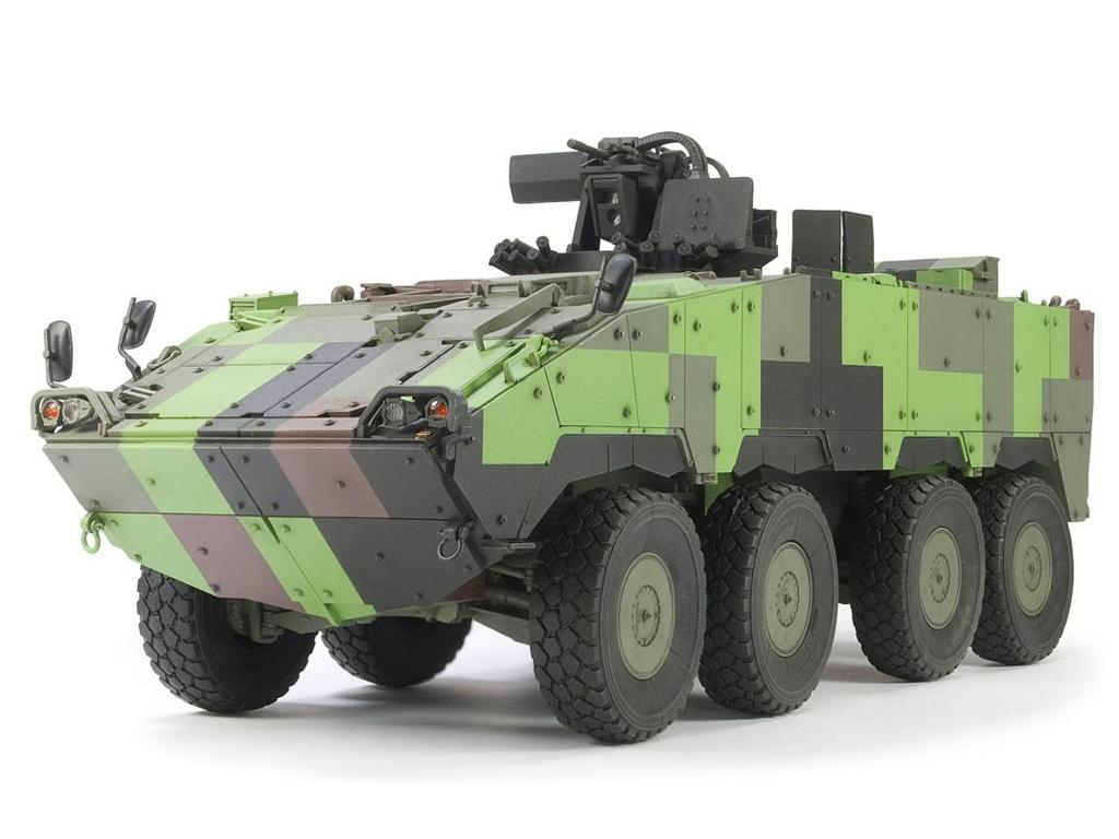 ROC TIFV CM-32/33 Clouded Leopard (Vista 5)
