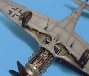 Fw 190D wheel bay - HASEGAWA  (Vista 1)