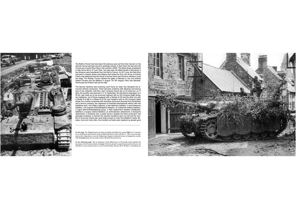Panzerwaffe Tarnfarben (Vista 7)