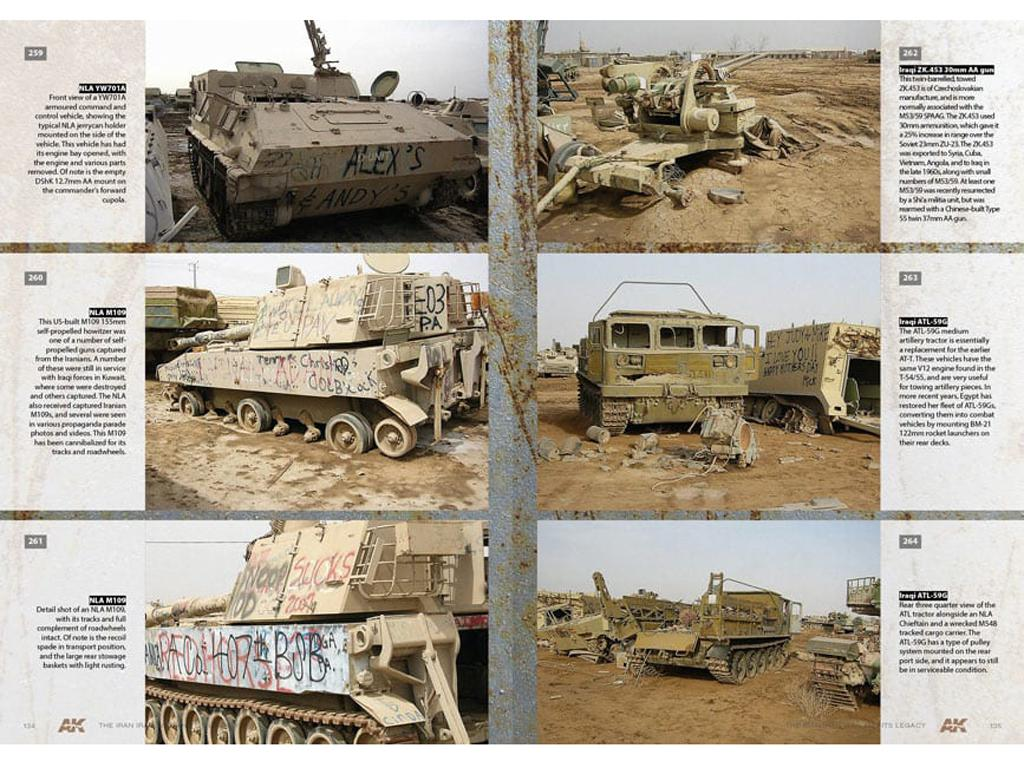 The Iran Iraq War 1980-1988 Modern Conflicts Profile Guide Vol IV (Vista 11)