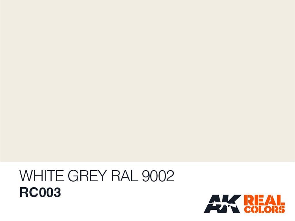 Gris Blanco RAL 9002 (Vista 2)