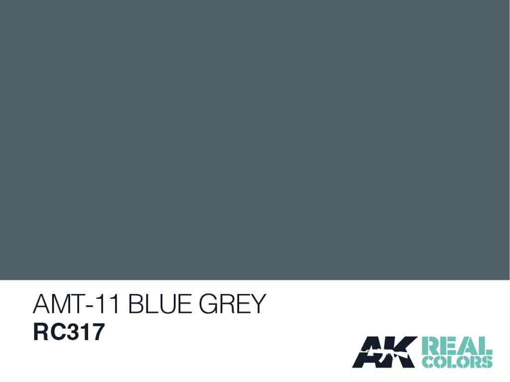 AMT-11 Azul Gris (Vista 2)