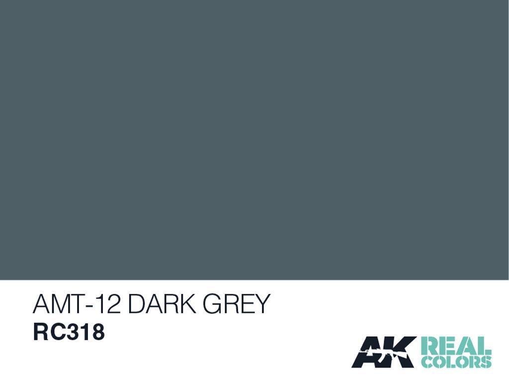AMT-12 Gris Oscuro (Vista 2)