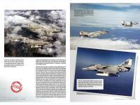 Aces High Monographic Series : Skyhawk (Vista 11)