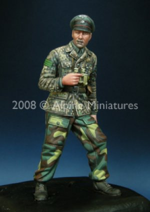 WSS Panzer Officer 44-45  (Vista 1)