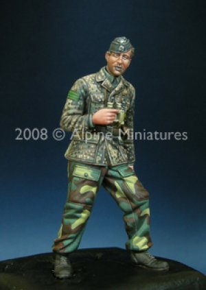 WSS Panzer Officer 44-45