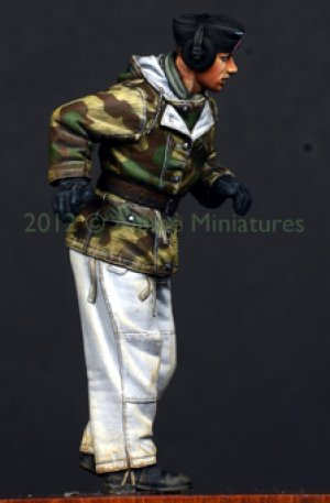 Comandante Aleman Panther 1  (Vista 5)