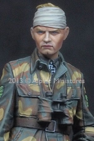 Max Wünsche Normandy  (Vista 5)
