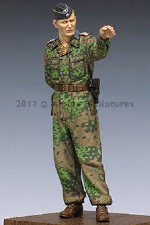 S Panzer Officer at Kursk #2  (Vista 2)