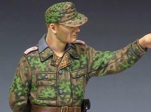 S Panzer Officer at Kursk #2  (Vista 6)