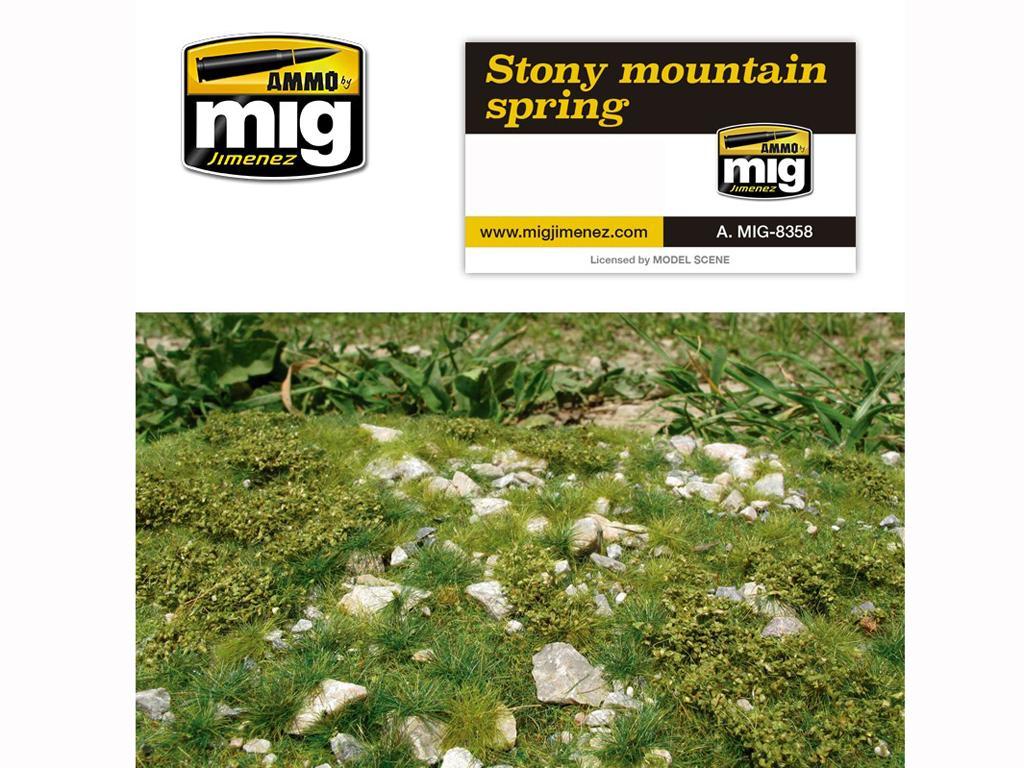Suelo de Montaña Primavera (Vista 1)