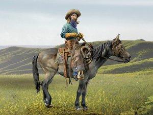 True Cowboy  (Vista 1)