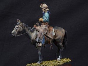 True Cowboy  (Vista 3)