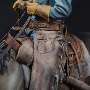 True Cowboy  (Vista 5)