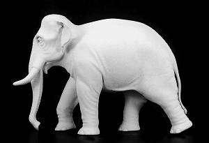 Elefante Indio  (Vista 1)