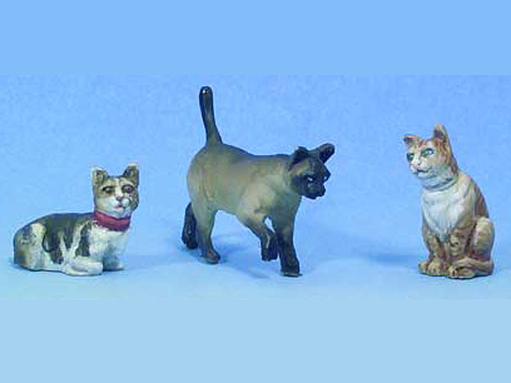 Gatos  (Vista 1)