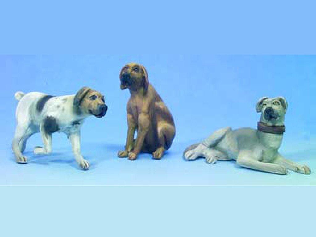Perros  (Vista 1)
